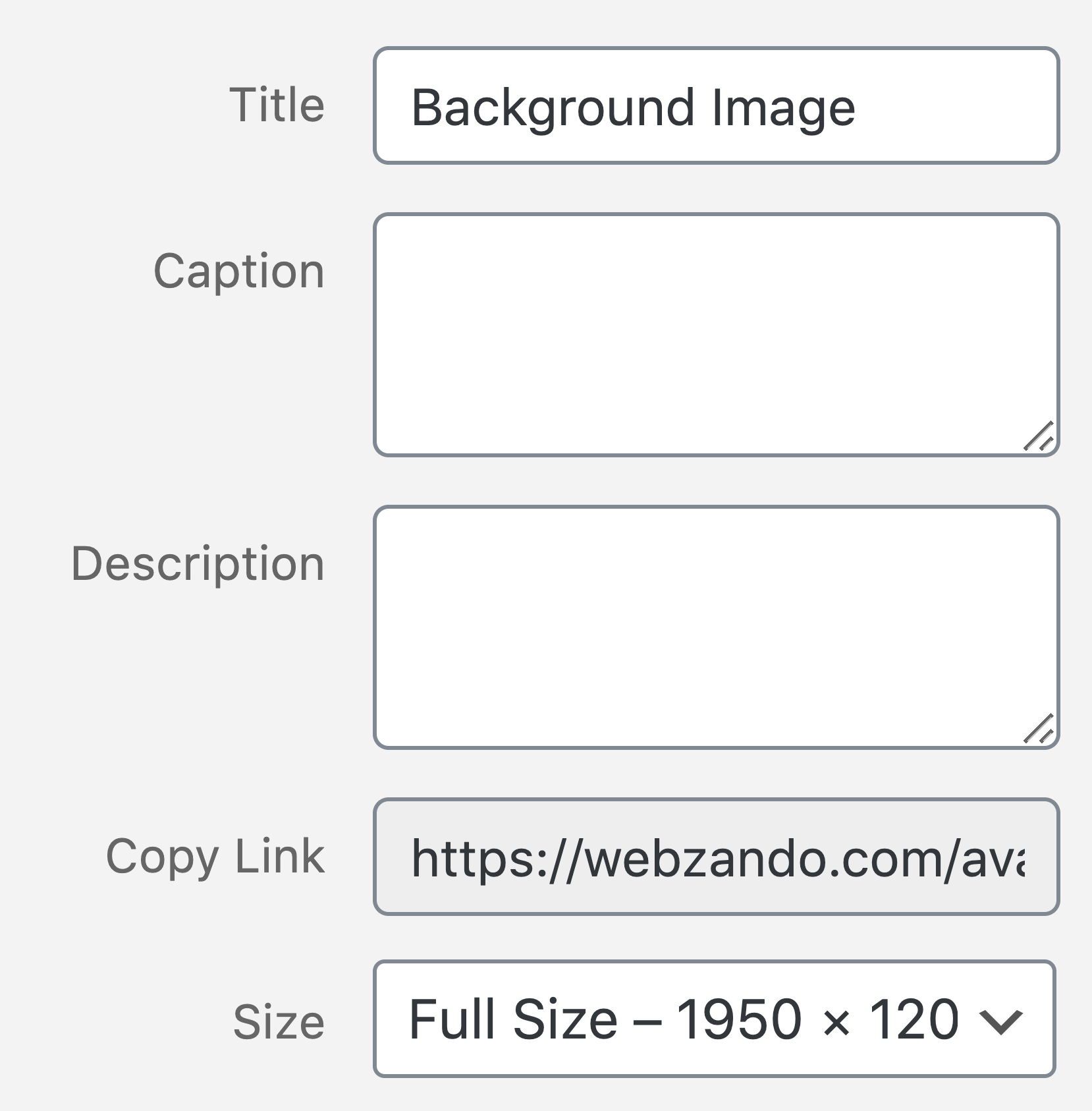 Background Blurred / WP Image Size Selection